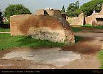 Flavian Palace Ruins Aula Regia Palatine Hill Rome
