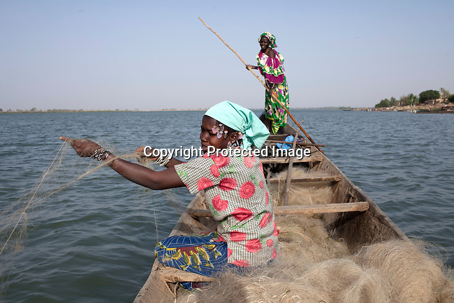 SEGOU, MALI - FEBRUARY 24: Fisher women work in the Niger river on February 24 2011, in Segou, Mali.  This area of Mali is fertile because of the Niger river and the many dams and channels built to help irrigate for farming. A channel has been built nearby by a Chinese company and it will help Libyan investor to do large scale farming in the area. They have signed a land lease with the government and many farmers has been moved away from their land. Photo by Per-Anders Pettersson..