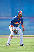 New York Mets center fielder Ricardo Cespedes (32) during an Instructional League game against the Miami Marlins on September 29, 2016 at the Port St. Lucie Training Complex in Port St. Lucie, Florida.  (Mike Janes/Four Seam Images)