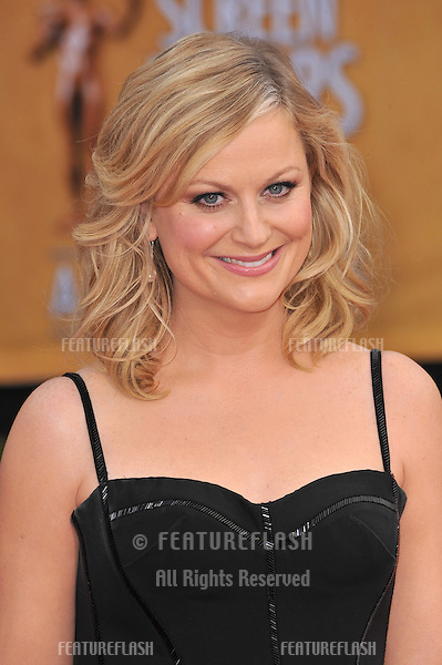 Amy Pohler at the 19th Annual Screen Actors Guild Awards at the Shrine Auditorium, Los Angeles..January 27, 2013  Los Angeles, CA.Picture: Paul Smith / Featureflash