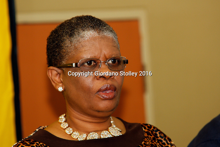 DURBAN - 22 February 2016 - Zandile Gumede, the eThekwini regional chairperson of the African National Congress, speaks at a press press conference in Durban where it was announced that the Delangokubona KZN Business Forum had agreed to stop disrupting municipal services. The group had complained that the eThekwini Metro Municipality was excluding them from bidding for municipal tenders. Picture: Allied Picture Press/APP