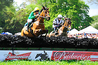 24  March, 2012:  Ross Geraghty and PULLYOURFINGEROUT clear the first in the Budweiser Imperial Cup at Aiken.