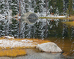 Mount Baker-Snoqualmie National Forest, WA: A quiet pond with snow covered Douglas firs and fall colored grasses