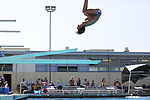 2013 Spring Diving: Los Altos High School