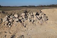 Lebensraum für Zauneidechse durch Schaffung von Steinhaufen, Legesteinhaufen und Totholz, Lesesteinhaufen, Totholzhaufen in einem Sandgebiet, Sand, sonnenwarme, sandige Plätze zur Eiablage für Zauneidechse, Biotop, Biotopschutz, Biotopschutzmaßnahmen, Biotopschutzmaßnahme. Schleswig-Holstein