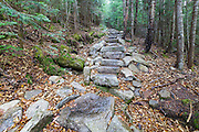 October 2016 - Leaf drop along the Mt Tecumseh Trail in Waterville Valley, New Hampshire; part of the White Mountains. In 2011, the year trail work (stone staircase) was done in this section, there was no noticeable erosion on the left-hand side of the trail. See how this section of trail looked in 2011: http://bit.ly/3760BXz