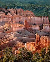 730750171v sunrise lights up the hoodoos  and fir trees in bryce canyon national park utah united states