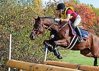 Enchantez, with rider Lindsey Solorzano (USA), competes during the Cross Country test during the Fair Hill International at Fair Hill Natural Resources Area in Fair Hill, Maryland on October 20, 2012.