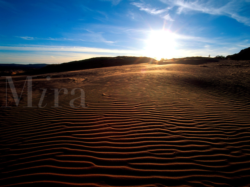 Art in Nature 9601-0121 - The Coral Pink Sand Dunes of southern Utah as viewed from the southwest, looking into the setting sun. Utah.