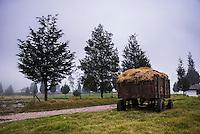 Trailer on the farm at Hacienda Zuleta, Imbabura, Ecuador, South America