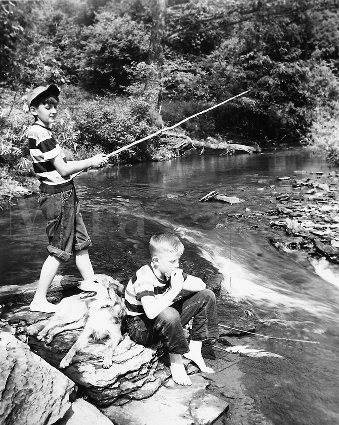 Carefree boys fishing with their dog.