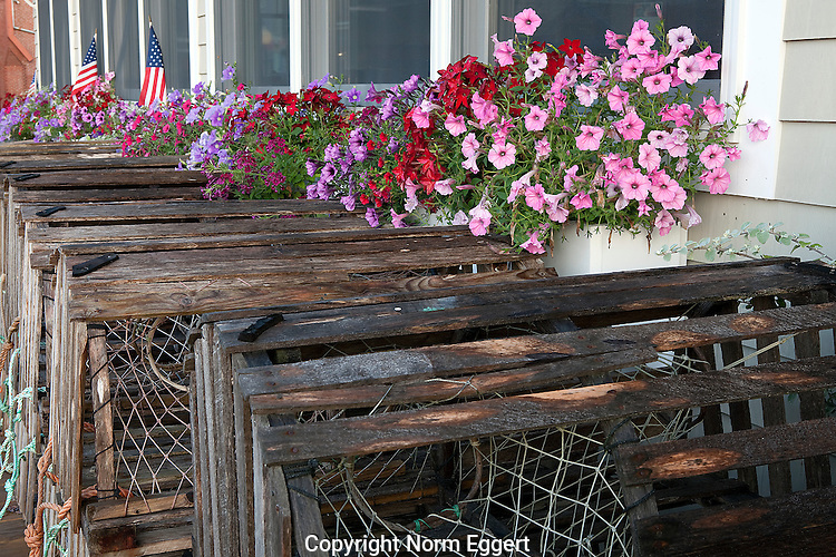 Flowers Atop Lobster Traps on the dock in Camden, Maine