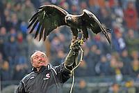 30.11.2014: Eintracht Frankfurt vs. Borussia Dortmund