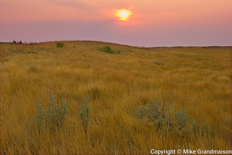 Rolling hills and coulees of mixed-grass native prairie at sunset<br />