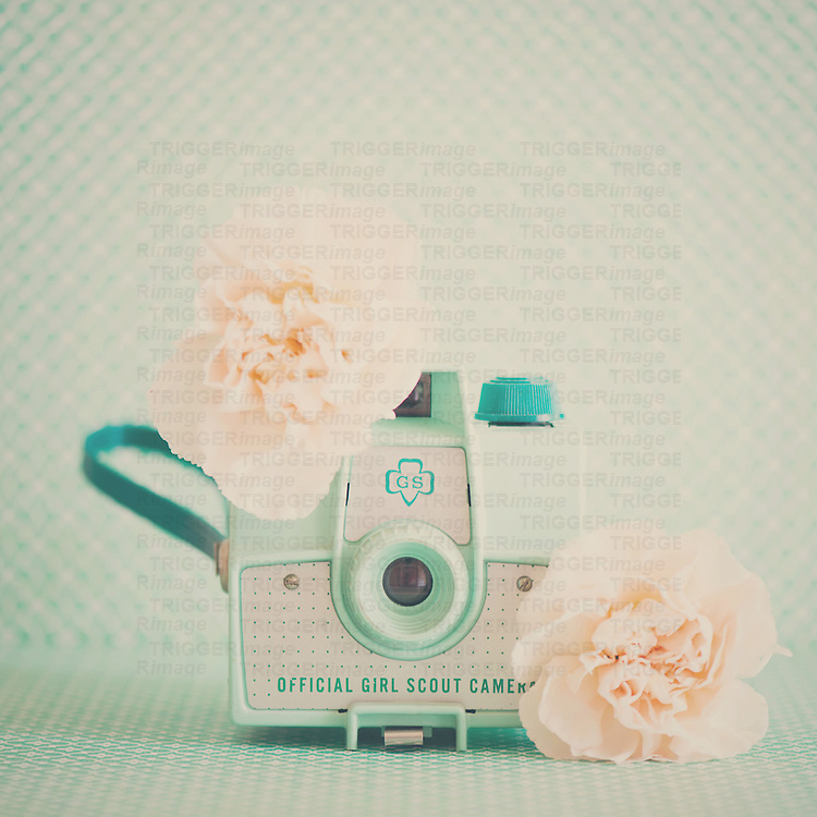 a mint green vintage camera with peach carnations surrounding it.