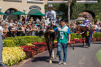 DEL MAR, CA  AUGUST 4:  #5 Our Silver Oak, ridden by Stewart Elliott, in the paddock before the Graduation Stakes  August 4, 2018 at Del Mar Thoroughbred Club in Del Mar, CA.  (Photo by Casey Phillips/Eclipse Sportswire/ Getty Images)