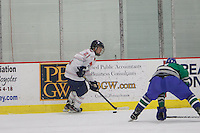 Men's D2 Hockey plays Florida Gulf Coast University on January 17, 2014. (Photo by Ty Hester)