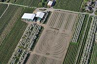 Apfel Plantage : EUROPA, DEUTSCHLAND, NIEDERSACHSEN, JORK, STADE (EUROPE, GERMANY), 20.04.2009: besondere Apfelplantage in Osterjork, Altes Land, Obst, Bauer, Anbau, Symbol, Luftbild, Luftansicht, Air, Aufwind-Luftbilder..c o p y r i g h t : A U F W I N D - L U F T B I L D E R . de.G e r t r u d - B a e u m e r - S t i e g 1 0 2, .2 1 0 3 5 H a m b u r g , G e r m a n y.P h o n e + 4 9 (0) 1 7 1 - 6 8 6 6 0 6 9 .E m a i l H w e i 1 @ a o l . c o m.w w w . a u f w i n d - l u f t b i l d e r . d e.K o n t o : P o s t b a n k H a m b u r g .B l z : 2 0 0 1 0 0 2 0 .K o n t o : 5 8 3 6 5 7 2 0 9.V e r o e f f e n t l i c h u n g  n u r  m i t  H o n o r a r  n a c h M F M, N a m e n s n e n n u n g  u n d B e l e g e x e m p l a r !.