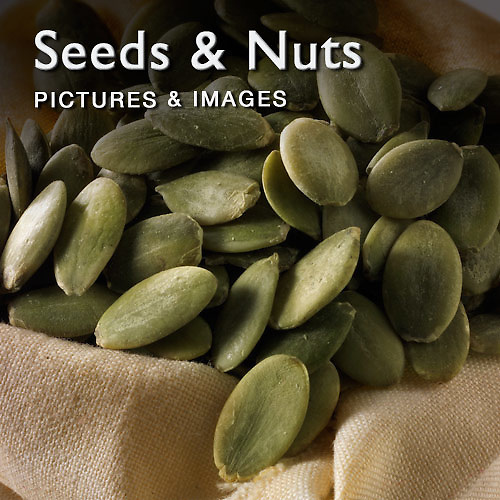 Food Pictures & images of seeds & nuts