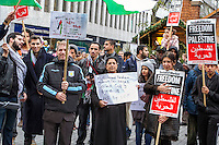 Birmingham Palestine Demo 15th Nov 2015