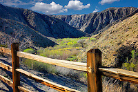 Overlook with fence at Big Marongo Canyon Preserve with early spring growth on cottonwood trees. California