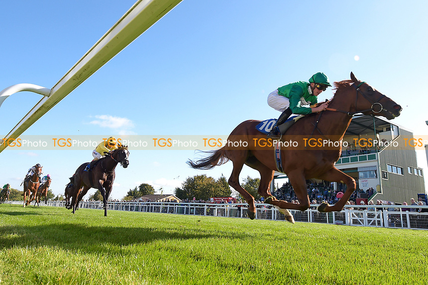 Winner of The Radcliffe & Co EBF Novice Stakes Div 1  Senza Limit ridden by James Doyle and trained by William Haggas  during Afternoon Racing at Salisbury Racecourse on 3rd October 2018