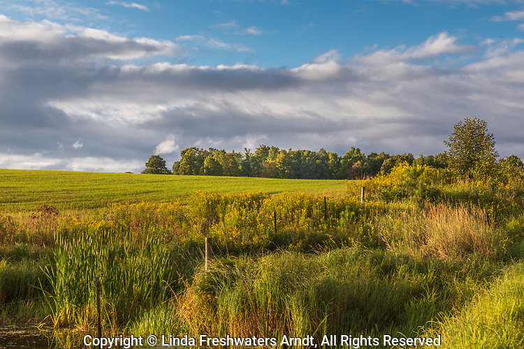 A farmer's field on a pretty autumn day in northern Wisconsin.