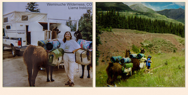 Everything required to use the 4x5 inch view camera weighed about 40 to 50 pounds. The 4x5 inch film was in film holders, an they weighed the most.  Family llama trekking in Colorado's San Juan Mountains, a pretty rugged place.