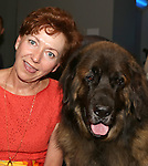'Sylvia' - Dog Auditions