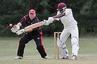 Cricket 2011-06