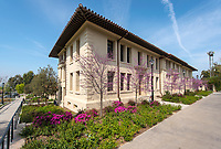 Swan Hall (original building entrance) with a flowering tree, March 28, 2013.<br />