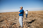 Mitchell Baalman, left, and his sister, Keyna Baalman, supervise milo harvesting on the family's 12,000-acre farm outside of Hoxie, Kan., on Thursday, Oct. 11, 2012. As historically dry conditions continue, farmers from South Dakota to the Texas panhandle rely on the Ogallala Aquifer, the largest underground aquifer in the United States, to irrigate crops. After decades of use, the falling water level ? accelerated by historic drought conditions over the last two years ? is putting pressure on farmers to ease usage or risk becoming the last generation to grow crops on the land. Farmers like Mitchell Baalman and Brett Oelke (not pictured), are part of a farming community in in Sheridan County, Kansas, an agricultural hub in western Kansas, who have agreed to cut back on water use for crop irrigation so that their children and future generations can continue to farm and sustain themselves on the High Plains.