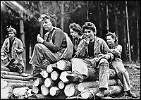 BNPS.co.uk (01202 558833)<br /> Pic:   HistoryPress/BNPS<br /> <br /> Lumberjills taking time out on the Isle of WIght.<br /> <br /> These inspiring photos tell the little known story of the patriotic women who chopped down trees to help us win the Second World War.<br /> <br /> When war was declared in September 1939 Britain was almost completely dependent on imported timber and only had seven months worth of it stockpiled.<br /> <br /> With men being sent to the front line in their droves, the Woman's Timber Corps was established to fell trees, operate sawmills and run forestry sites.<br /> <br /> About 15,000 women, some as young as 14, volunteered to carry out the arduous tasks previously done by men.