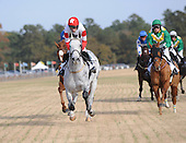 A head on view of Slip Away leading the Colonial Cup in the early going.
