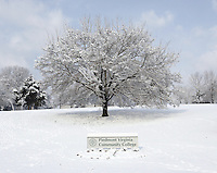 pvcc piedmont community college snow