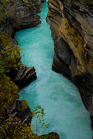 """ATHABASCA SQUAW""<br />