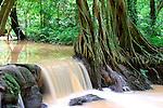 Than Bok Khoram Cascade, Thailand