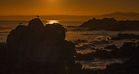 Sunrise, Pacific Grove