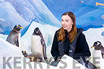 Katie Christie, Dingle Oceanworld with the two lesbian penguins Missy and Bubbles