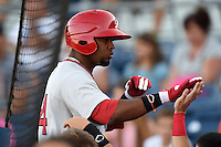 Palm Beach Cardinals outfielder Anthony Garcia (44) is congratulated after hitting a home run during a game against the Charlotte Stone Crabs on April 12, 2014 at Charlotte Sports Park in Port Charlotte, Florida.  Palm Beach defeated Charlotte 6-2.  (Mike Janes/Four Seam Images)