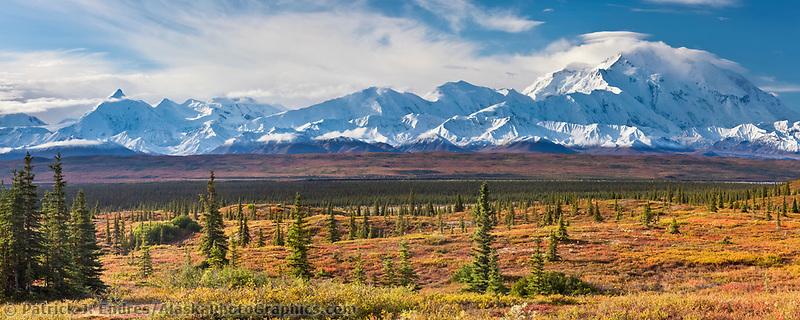 Panorama of the autumn tundra and the summit of Denali, Denali National Park, Alaska.