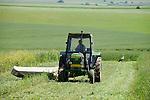 ROMANIA Banat, village Firiteaz, Bio Farmland, a farm run by swiss family / RUMAENIEN Banat, Firiteaz, BIO FARMLAND, betrieben von den Schweizer Einwanderern Familie Häni und Siegrist, rumaenischer Mitarbeiter maeht einen Schlag mit John Deere Traktor