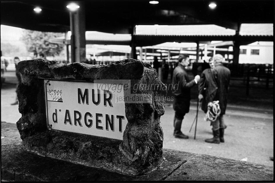 Europe/France/Bourgogne/Saône-et-Loire/St Christophe en Brionnais: Marché aux bovins charolais - vaches - le mur d'argent, ainsi nommé car c'est là que les b^tes étaient payées en liquide