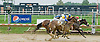 Dahteste winning at Delaware Park on 9/3/12
