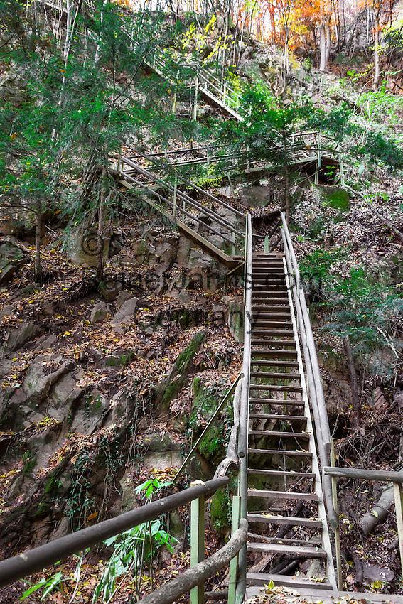 Italy, Alto Adige - Trentino (South Tyrol), Community Appiano sulla Strada del Vino: wooden staircase at Castle Hiking Trail | Italien, Suedtirol, bei Bozen, Gemeinde Eppan: Holzstiege auf dem Eppaner Burgenwanderweg