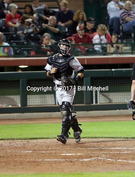 Dom Nunez - Salt River Rafters - 2017 Arizona Fall League (Bill Mitchell)