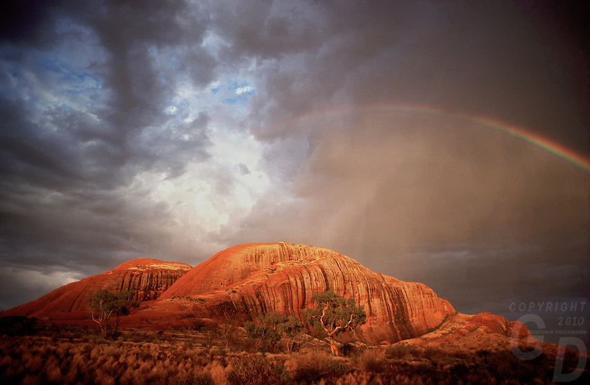 The Olgas during a rare Rainstorm and a Rainbow, Central Australia,Uluru National Park,Australia, Northern Territory