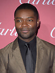 David Oyelowo attends The The 26th Annual Palm Springs International Film Festival in Palm Springs, California on January 03,2015                                                                               © 2014 Hollywood Press Agency