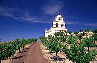 USA, California. Paso Robles. Church on hill with grape vineyard