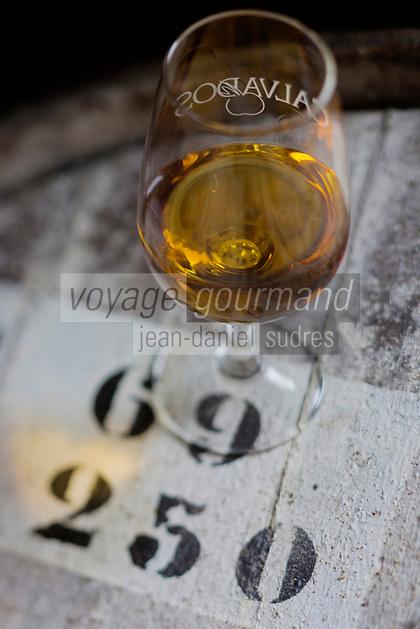 Europe/France/Basse-Normandie/50/Manche/ Saint-Jean-des-Champs: Ferme de l´Hermitière,  Vieux Calvados// Europe,France,Normandie,Basse-Normandie,Saint-Jean-des-Champs: Ferme de l´Hermitière, Old Calvados